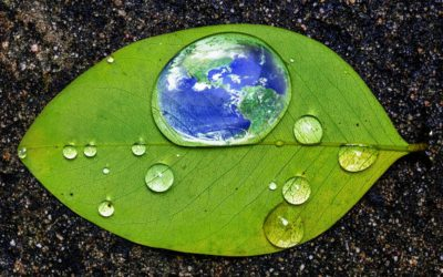 5 Ways to Celebrate Earth Day in LA County