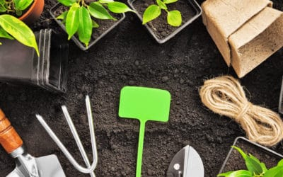 The Dirt on Smart Gardening